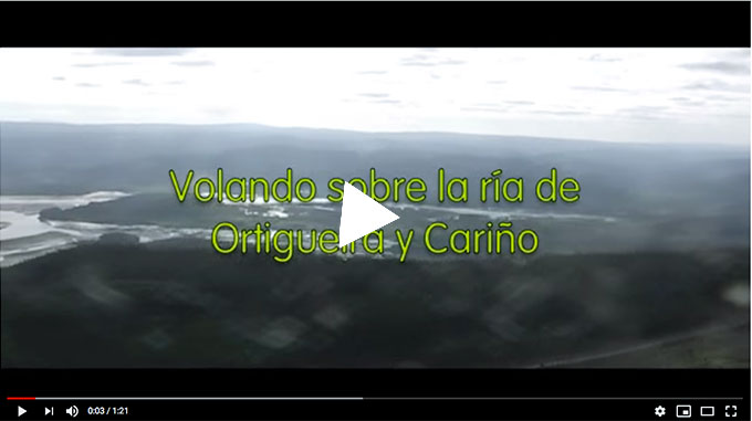 Ortigueira_video